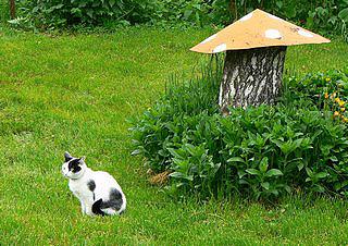 декоративный гриб мухомор в саду