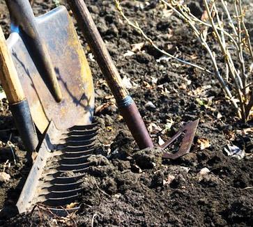 Тип почвы