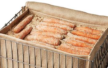 хранение моркови пересыпанной песком