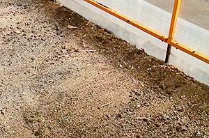 Мульчирование песком в теплице