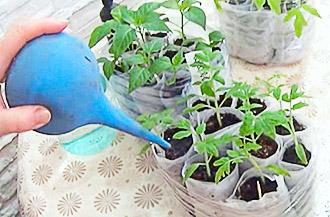 Перекись водорода для полива растений