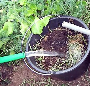 Процесс приготовления зеленого удобрения