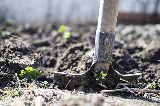 Осенняя перекопка почвы