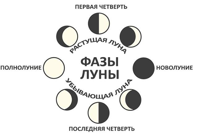 Диаграмма фаз Луны