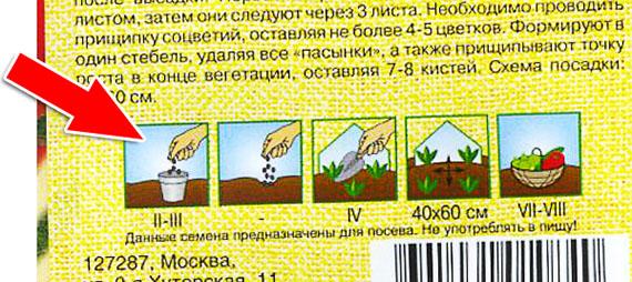пакет с семенами помидор с указанием сроков проведения работ