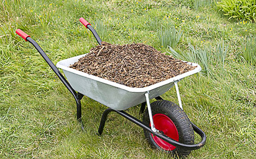 Садовая тачка, груженая садовым мусором