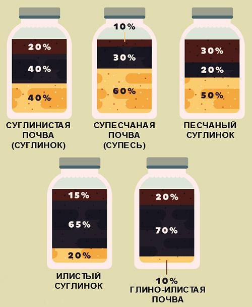 Как определить, какая почва на участке - таблица
