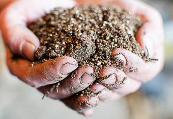 Как сделать самому грунт для высадки рассады