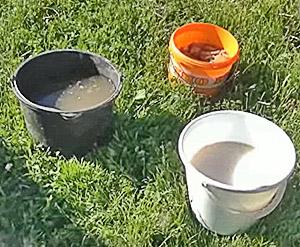 рецепт самостоятельного приготовления подкормки для садовой земляники