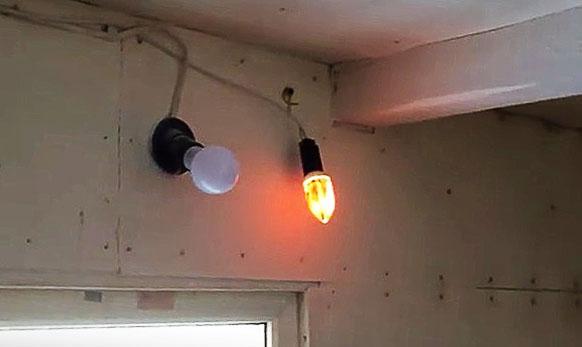 Лампы освещения в курятнике
