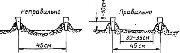 Примерный размер и форма гряд по системе Миттлайдера